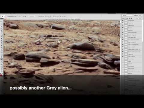 NASA PIA17959 MARS: Real Grey aliens excavating area