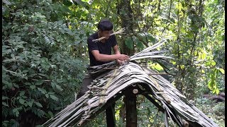 Survival in the tropical rainforest, ep 2, finding materials to build a hut