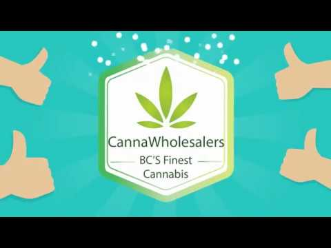 Buy Weed Online Canada – CannaWholesalers Review & Deals
