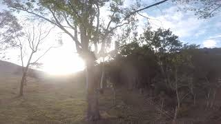 Late afternoon training. Drone racing FREESTYLE. Martian II
