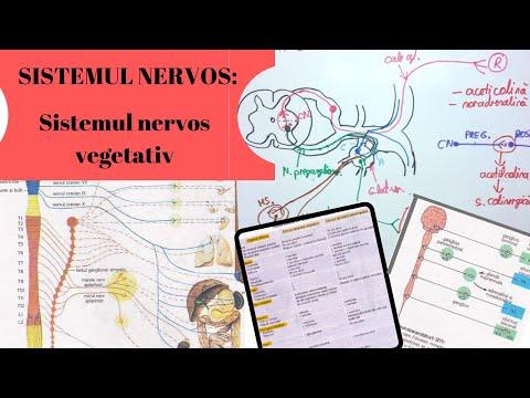 Medicamente nesteroidiene pentru durerea articulară