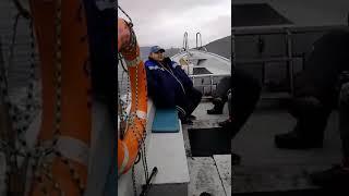 Когда ловить пикшу в черном море