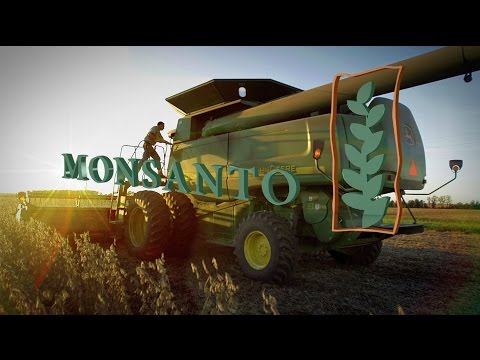 Mexico builds wall to keep out Monsanto's GMOs