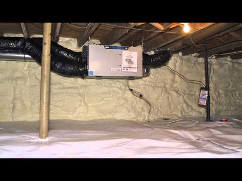 What is the best way to treat a mold infested, dirt crawl space?