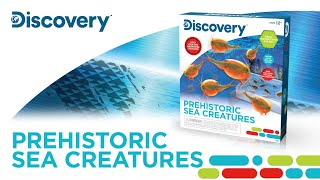 Discovery™ Prehistoric Sea Creatures
