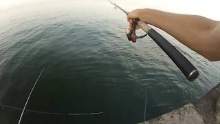 Ловля самодуром с берега на черном море