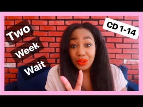 Download Two Week Wait Symptoms Before Bfp Video Diary Video 3GP Mp4