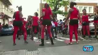 preview picture of video 'Défile de la Mi-Carême 2015 à Basse-Terre'