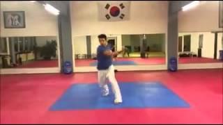 Taekwondo moves von Rudolf Winterstein junior und Marcello Braun mit verpatzte Szenen