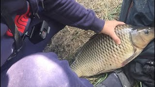 Рыбалка в софиевке днепропетровской области на месяц