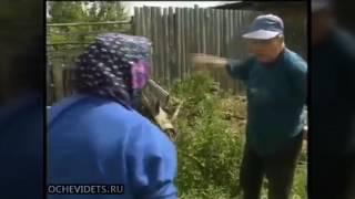 Деревенские разборки дедок и бабуся