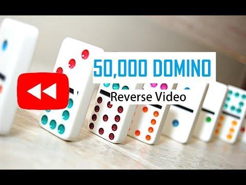 Amazing Fifty Thousand Domino Reverse Video  |  #ReverseFlashBack