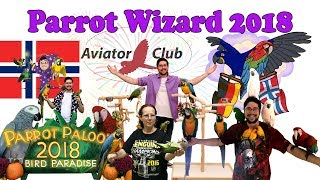 Happy New Year! Parrot Wizard 2018 Recap Video