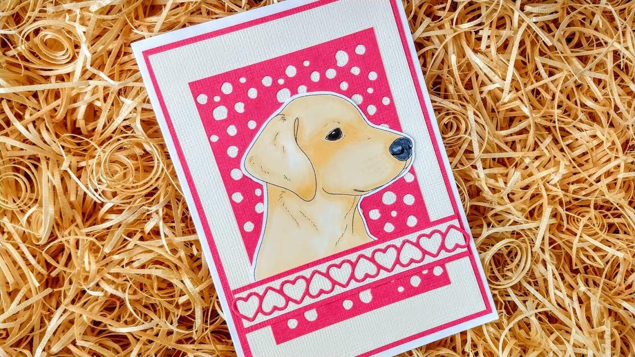 Colouring Labrador