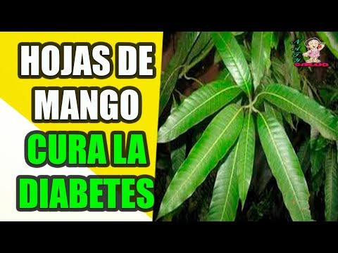 Diabetes abuso de alcohol