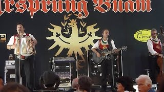 preview picture of video 'Ursprung Buam live in Friedberg am 18.08.2014'