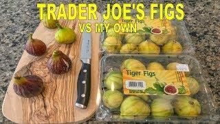 Trader Joes Tiger Fig Tasting (Panache) Vs I-258, Col De Dame Noir, Lattarula, Smith, MBVS