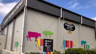 Margaret River Dairy Company Guinness World Records Attempt