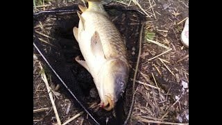 Хорошие водоемы для рыбалки в запорожье
