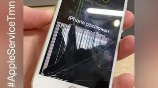 Замена дисплея iPhone 6s в Тюмени