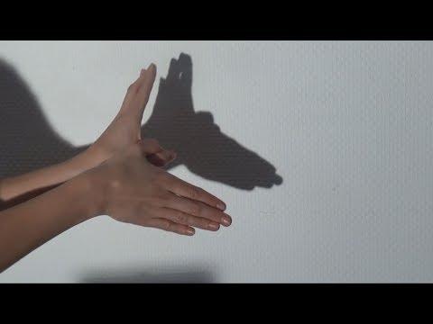 Der Grund der Thrombose der Hände