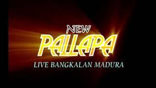 Mawar Bodas  - Vivi Rosalita - New Pallapa