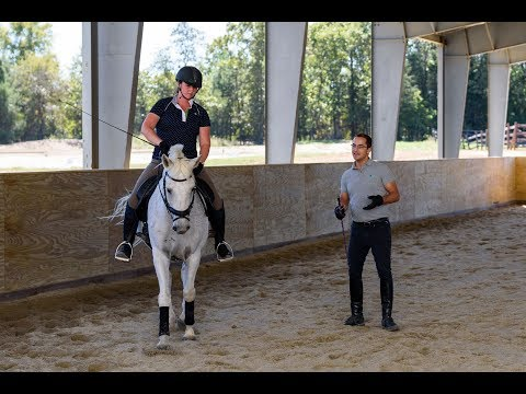 7 Things You Should Be Getting From Your Horse Trainer/Riding ...