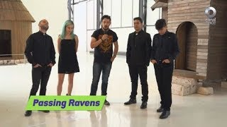 Acústicos C11 - Passing Ravens