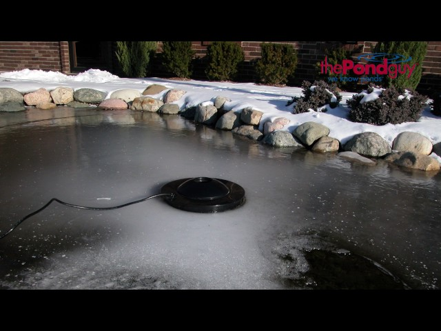 Best Pond Heater De Icer The Definitive Pond Heating Guide 2020