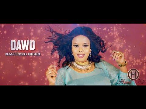 Nasteexo Indho | DAWO | (Music Video) 2018
