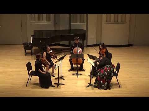 My favorite piece of music, the Brahms Clarinet Quintet