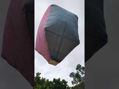 Balão em açucena Mg 8