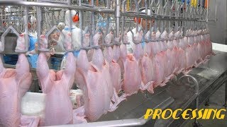 Amazing Food Processing Machines in Poultry Factory ★ Fast Workers Cutting & Processing Chicken 2018