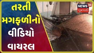 શું Saurashtraનાં માર્કેટ યાર્ડમાં નથી યોગ્ય વ્યવસ્થા, વરસાદી પાણીમાં મગફળી તરી રહી છે