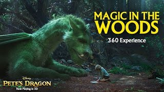 Magic in the Woods 360 Video Experience - Pete