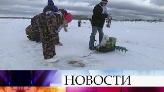 Фестиваль вТверской области собрал тысячи любителей подледной рыбалки совсей страны.