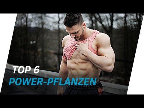 Top 6 POWER Pflanzen 🌽 VEGANE Proteinquellen (Pflanzliches Eiweiß) | Andiletics