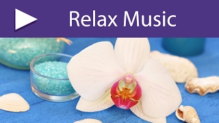 Holistic Massage: 3 HOURS Ayurvedic Music, Background Songs for Spa