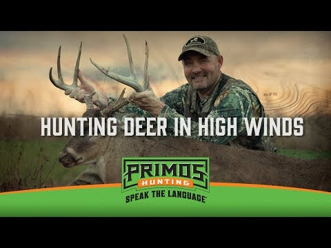 Hunting Deer on Windy Days video thumbnail