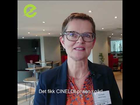 CINELDI Prisen 2018 gikk til Hafslund Nett