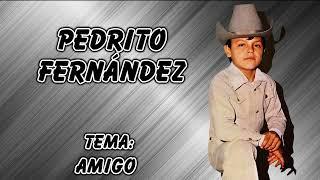 Pedrito Fernández - Amigo