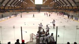 Ice hockey: Frisch school finals