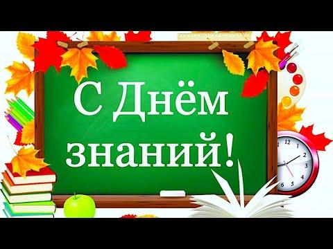 Поздравление с Днём знаний / 1 сентября / Футаж / Открытка