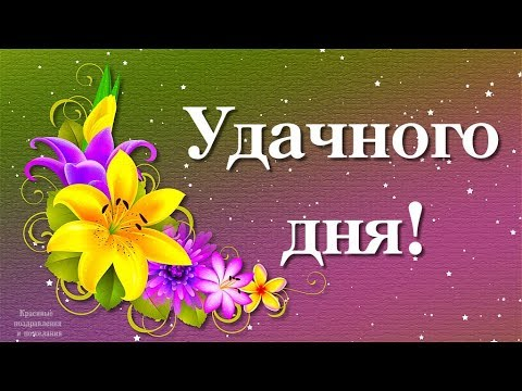 Удачного дня и отличного настроения!