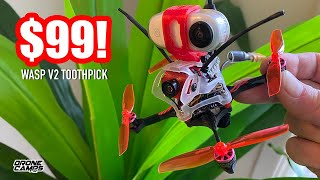 $99 BEGINNER TOOTHPICK DRONE! - Geelang Wasp V2 Toothpick with Insta360 Go - REVIEW & FLIGHTS