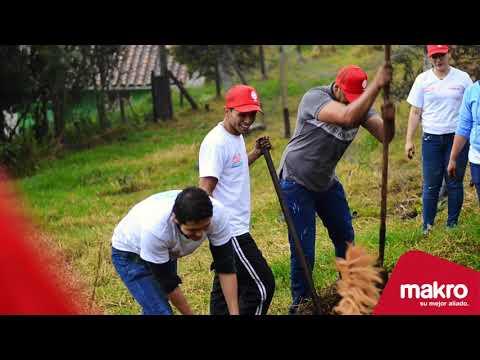 ¡Makro planta árboles en Envigado!
