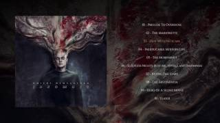 Shokran  Dmitry Demyanenko  Insomnia  Instrumental Progressive Metal