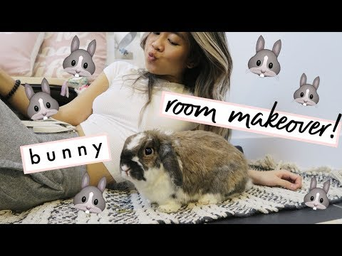 , title : 'MY BUNNY GETS A HOME MAKEOVER   vlogmas day 6