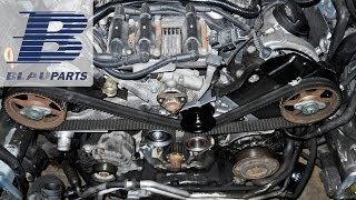 How To Replace VW Passat, Audi A4, Audi A6 Timing Belt on 2.8 Liter 30 Valve Engine
