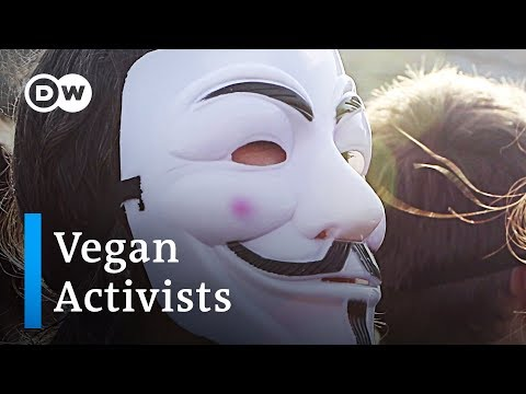 Vegan activists unmask the truth behind animal agriculture | DW Stories